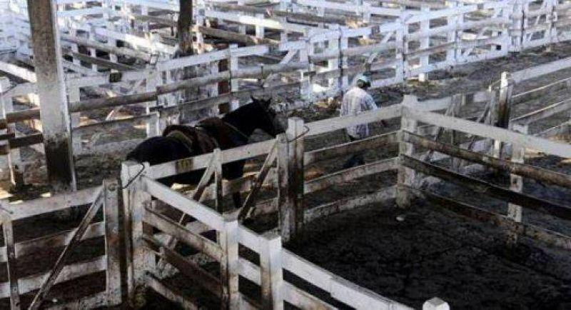 Productores rurales anunciaron un paro de cinco d�as para fin de mes