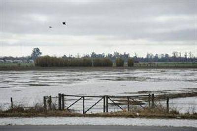 Inundaciones: el campo perdió $ 1000 millones