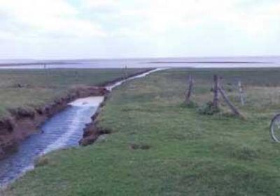 En setiembre iniciarán la limpieza del canal desde Ruta 188 hacia el Carpincho