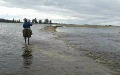 Temporal: Emergencia y desastre agropecuario en 66 municipios
