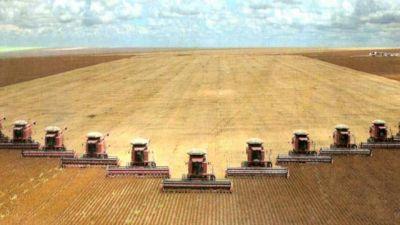 La soja generaría menos del 10% de puestos laborales en Salta