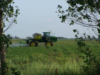 Agroquímicos: Suprema Corte dio lugar a presentación de Ingenieros