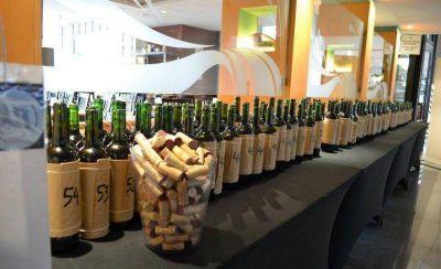 Más de 70 etiquetas de cabernet pasaron por el WineMdq Tasting 2015