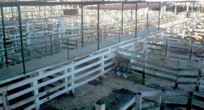 Adhesión total a huelga del campo en Corrientes