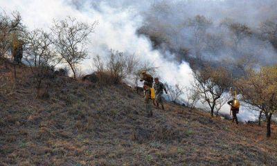 Por baja de la humedad y vientos, es �muy alto� el riesgo de incendio forestal