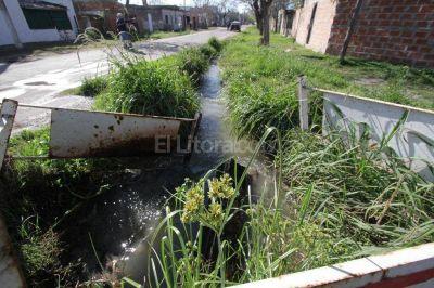 En barrio Alfonso conviven con una catarata cloacal