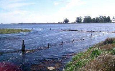 Inundaciones: Oficializan el estado de emergencia agropecuaria