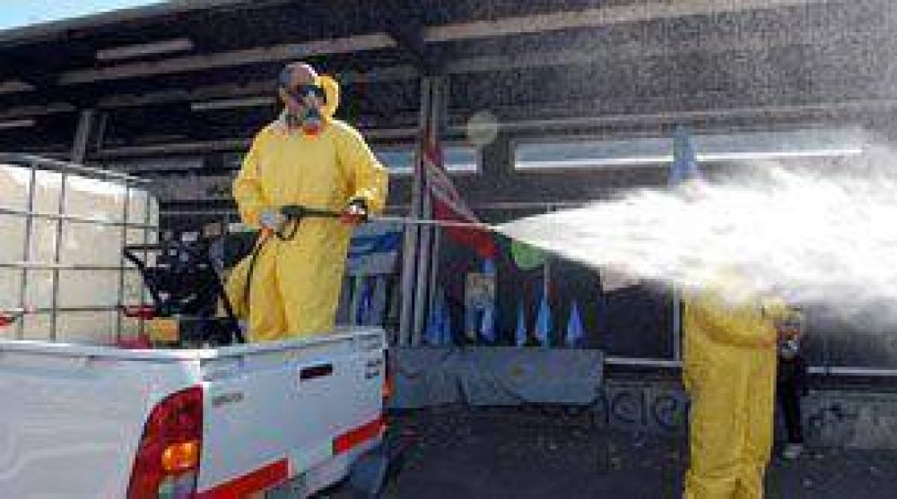 Dengue: Argentina y Bolivia realizarán tareas de prevención conjuntas en la frontera.