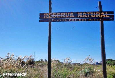 Greenpeace participar� de una jornada de limpieza en la Reserva del Puerto