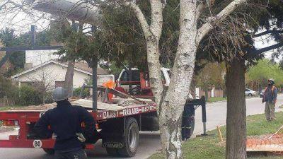 Santa Clara: por la presión de los vecinos retiraron la antena de la discordia