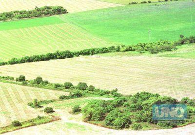 El jueves el Senado tratará la Ley de Agroquímicos