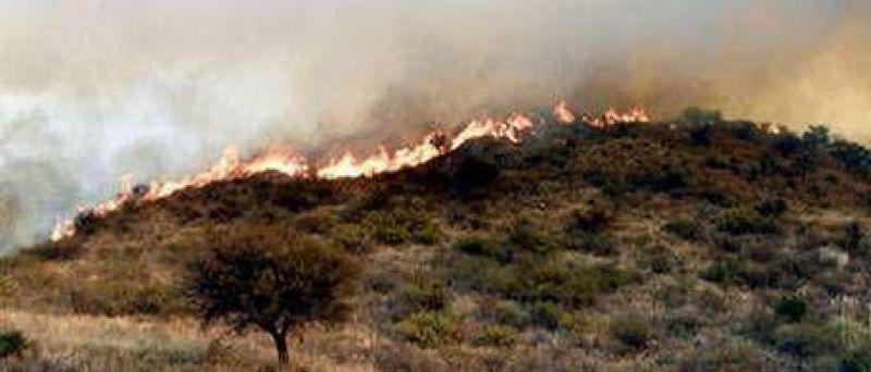 Dramática lucha contra los incendios forestales