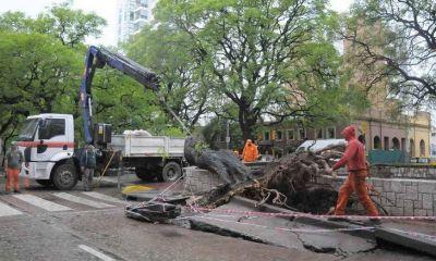 Provincia coordinó acciones para minimizar el impacto de las lluvias de los próximos días