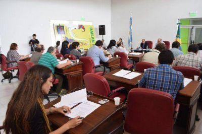 Sucesión en el HCD: Qué dice la Ley Orgánica de las Municipalidades