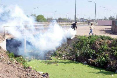 La municipalidad intensificó la lucha contra los insectos