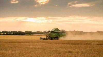 Eliminarán las retenciones al maíz, el trigo y la carne y bajarán las de la soja un 5%