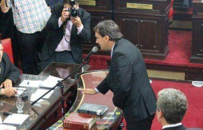 Galmarini asumió como vicepresidente 2 de la cámara de senadores Provincial
