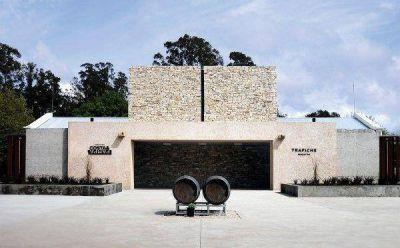 Los vinos de Mar del Plata se abren al mundo