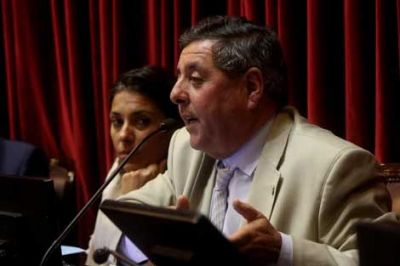 """Para De Ángeli, el levantamiento del cepo """"es un paso enorme para recuperar la economía del país"""""""