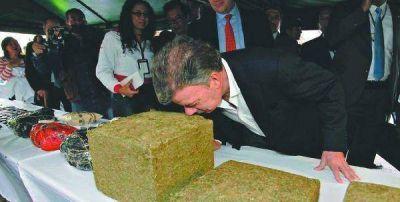 Colombia legaliza el uso medicinal de la marihuana