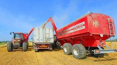 La rentabilidad del agro es inferior a enero de 2014 pese a la baja de retenciones