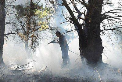 Las altas temperaturas mantienen activos algunos focos de incendio