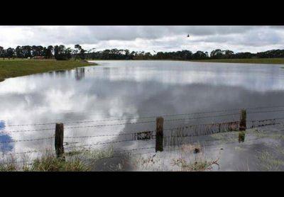 La Federaci�n Agraria solicit� que se dicte la emergencia agropecuaria