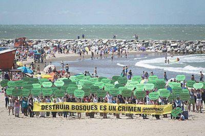 Turistas y marplatenses se sumaron a un masivo reclamo contra la deforestación