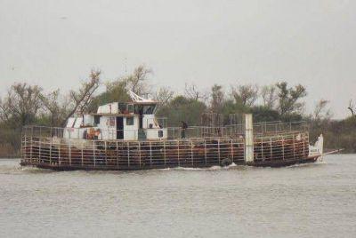 Por la crecida del río Paraná el Senasa agiliza la movilización de la hacienda de las islas