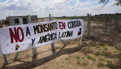 Suspendieron la orden de desalojo a los acampantes frente a Monsanto en Malvinas Argentinas