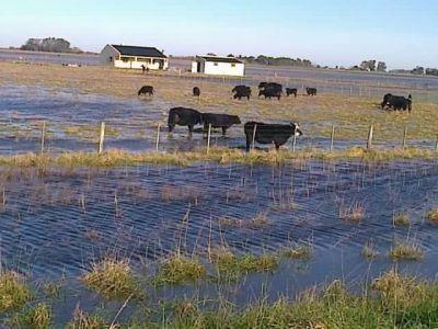 El Gobierno provincial decretó la emergencia agropecuaria