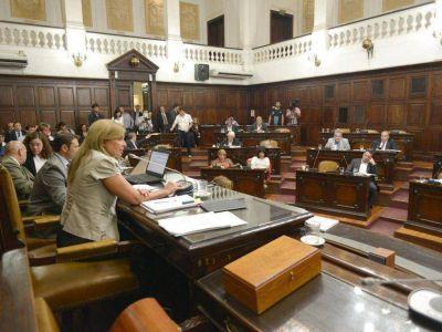 Aprobado por Diputados, el presupuesto llega al Senado provincial