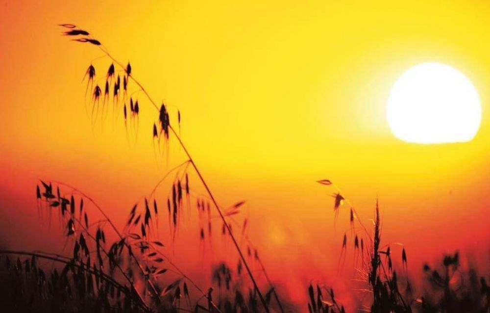 Volvió el calor: la máxima llegará a los 34°