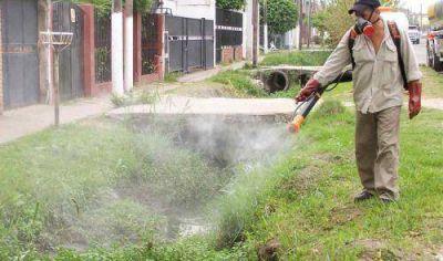 Brown: detectan el primer caso de dengue autóctono en la región