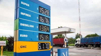En Salta se paga el precio m�s alto de Am�rica Latina