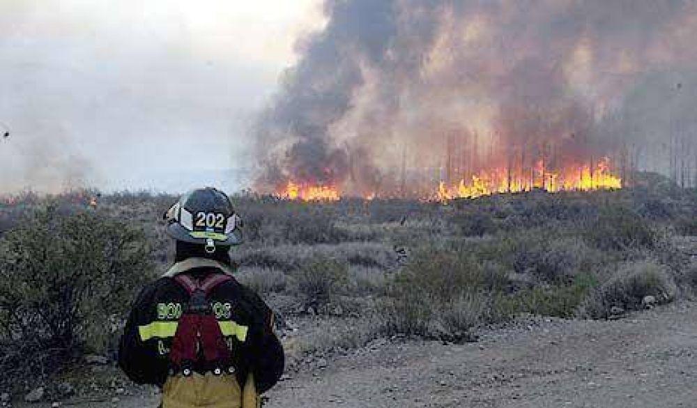 El fuego ya arrasó 80 mil hectáreas en San Luis