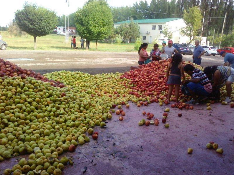 Tiraron manzanas y peras para protestar por la crisis frutícola