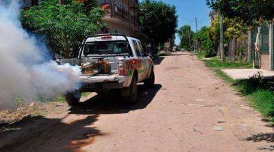 Dengue: hay un brote en Misiones y Corrientes ya declaró el alerta