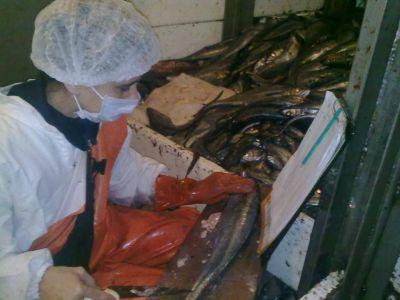 Observadores del INIDEP rechazan acusaciones de corrupci�n