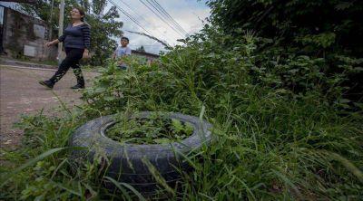 Hay cuatro casos sospechosos de zika en Salta capital
