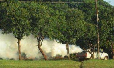 Continúan las acciones prevención y control de dengue en localidades de Misiones