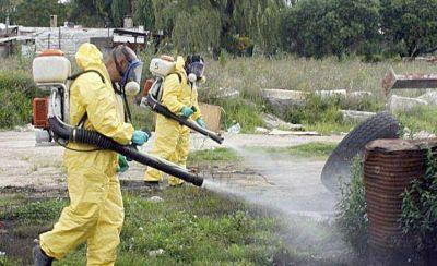 Advierten que los mosquitos son cada vez más resistentes a las fumigaciones