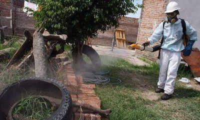 Alertan que el municipio no realiza fumigación en domicilios