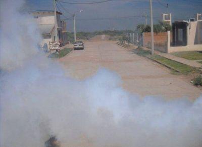 Aseguran que las fumigaciones por el dengue se realizan sólo en la vía pública