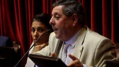 De Angeli fue electo vicepresidente del bloque Frente PRO en el Senado