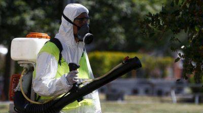 El dengue avanza en Buenos Aires y ya hay epidemia en C�rdoba