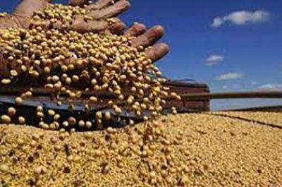 Por la devaluaci�n, el fondo de la soja subi� un 27 por ciento
