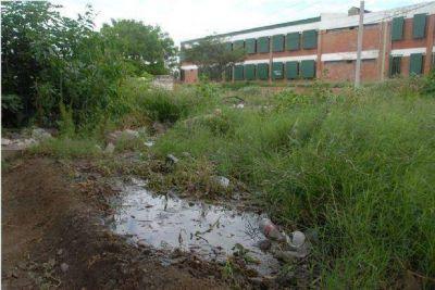 Las acciones contra el dengue serían insuficientes en la provincia