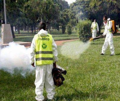 Dengue: piden la emergencia sanitaria