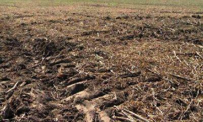Pisando fuerte: impacto del tránsito en suelos agrícolas